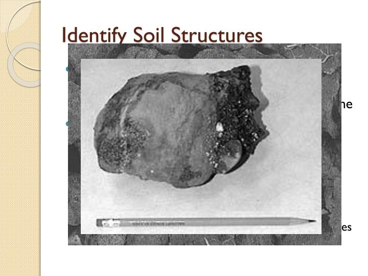 Identify Soil Structures