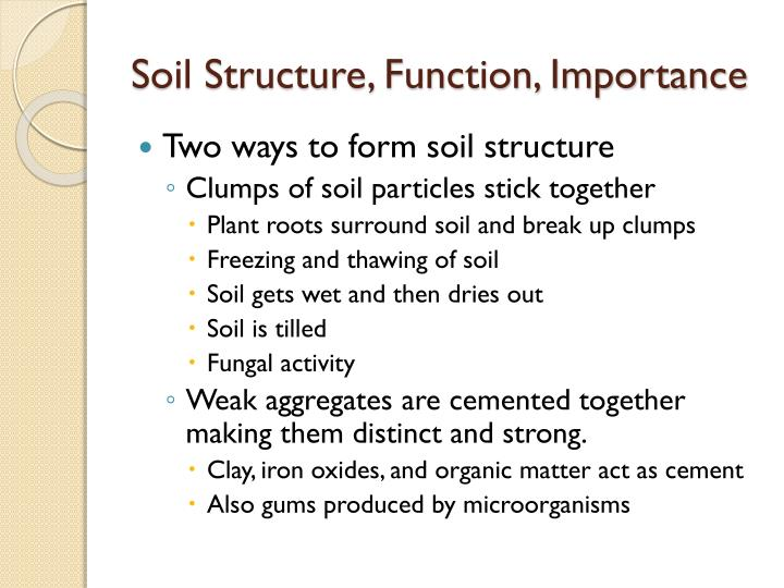 Soil Structure, Function, Importance