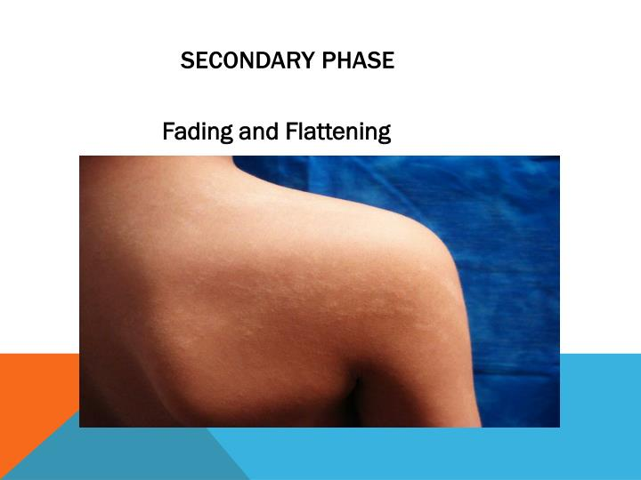Secondary Phase