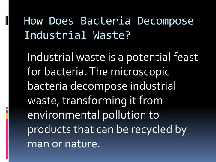 How Does Bacteria Decompose Industrial Waste?