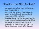 how does love affect our brain