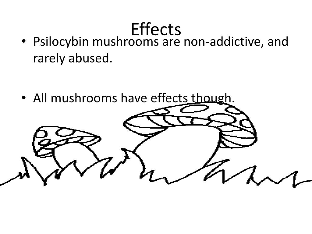 PPT - Magic Mushrooms PowerPoint Presentation - ID:1990395