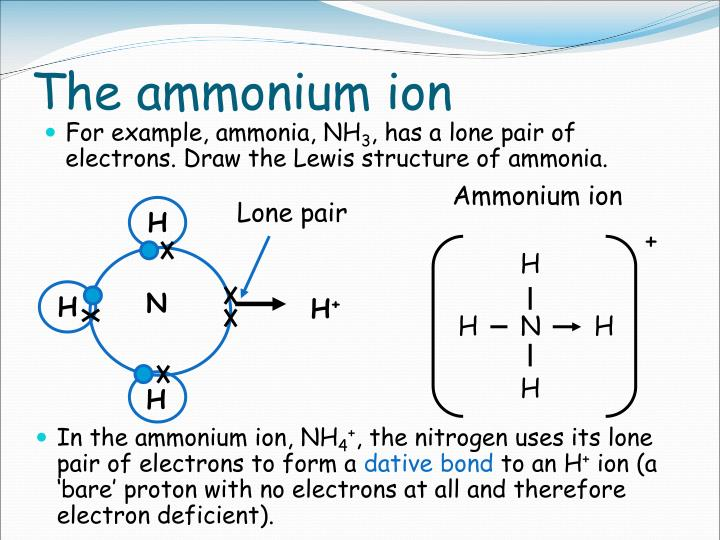 The ammonium ion