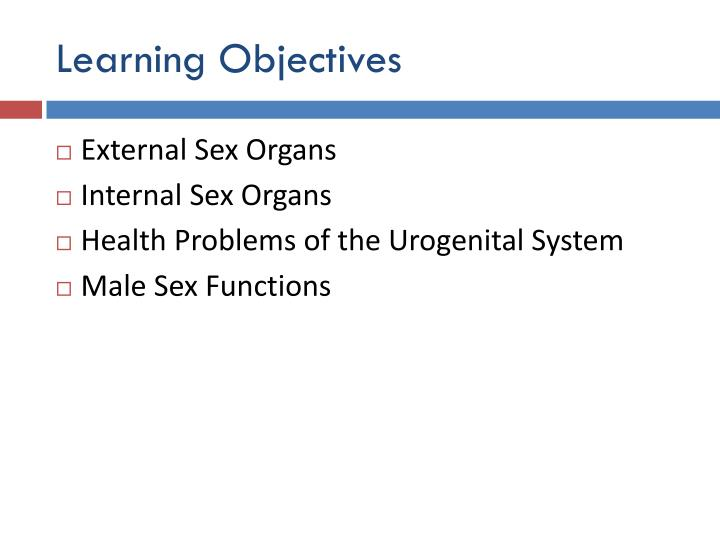 PPT - Male Sexual Anatomy and Physiology PowerPoint Presentation ...