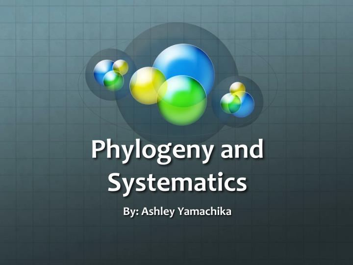 phylogeny and systematics n.