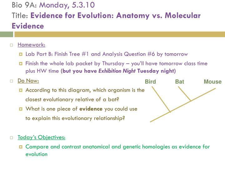Ppt Bio 9d Thursday 42811 Title Evidence For Evolution