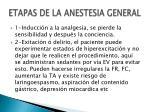 etapas de la anestesia general