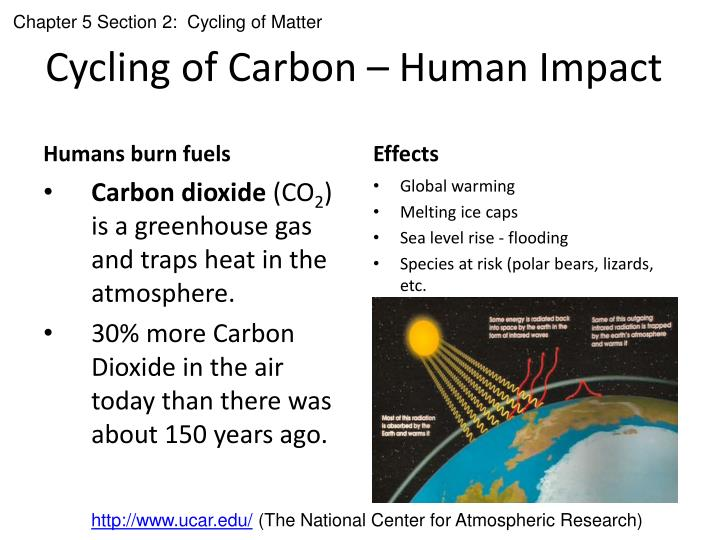 human impact on the carbon cycle The carbon cycle and atmospheric carbon dioxide 185 executive summary co 2 concentration trends and budgets before the industrial era, circa 1750, atmospheric carbon dioxide (co 2) concentration was 280 ±10 ppm for several thousand years it has risen continuously since then, reaching 367 ppm in 1999.