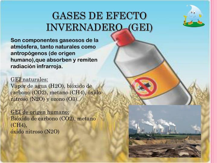 GASES DE EFECTO INVERNADERO  (GEI)