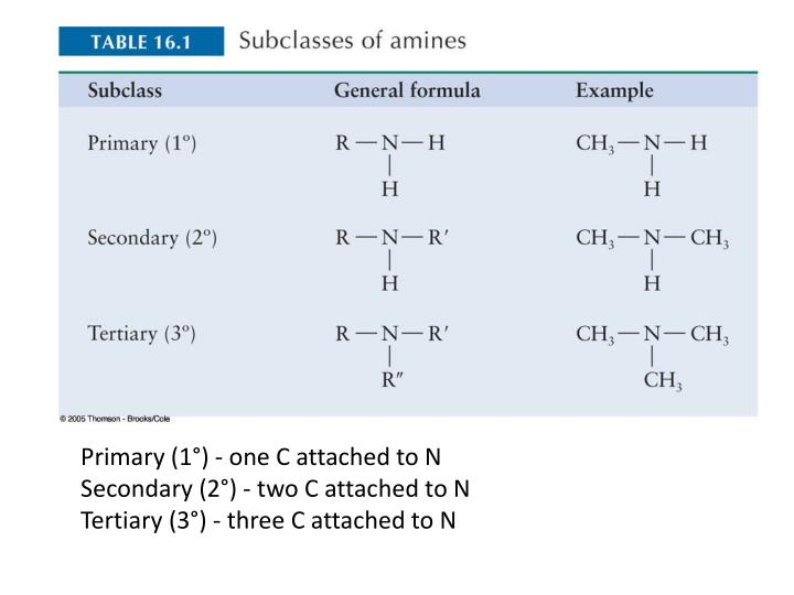 Primary (1°) - one C attached to N