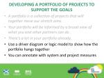 developing a portfolio of projects to support the goals5