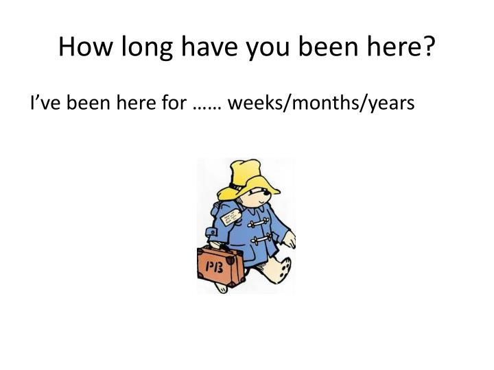 How long have you been here