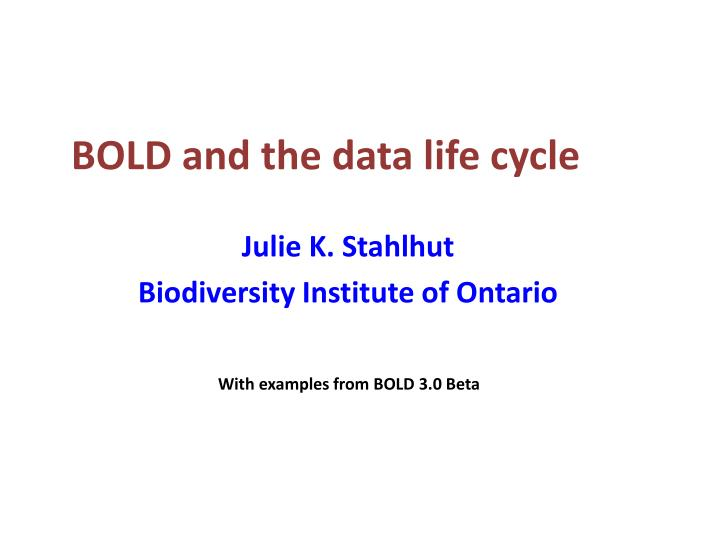 bold and the data life cycle n.