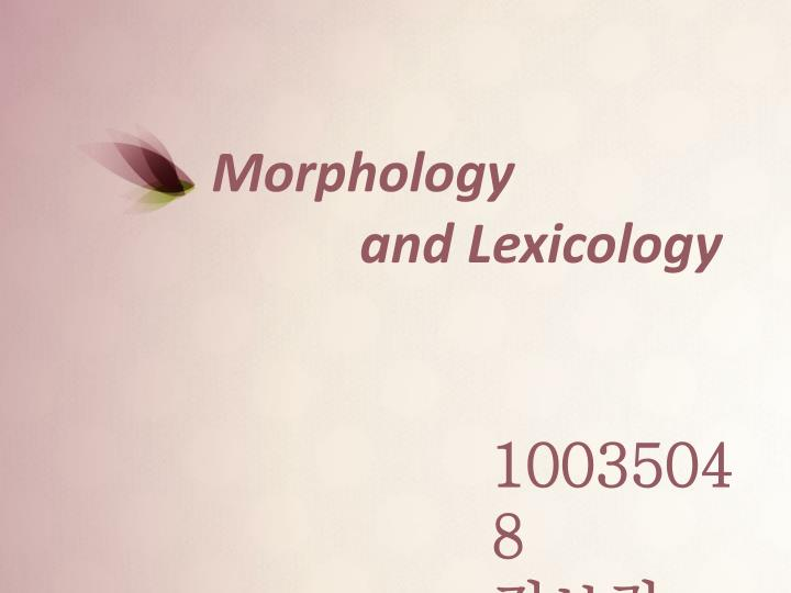 morphology and lexicology n.