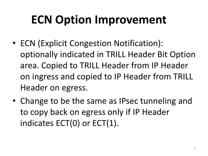 ECN Option Improvement
