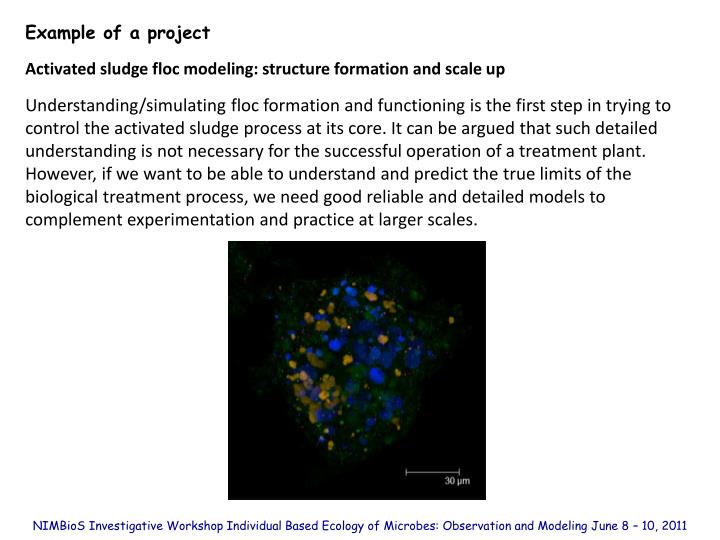 Example of a project