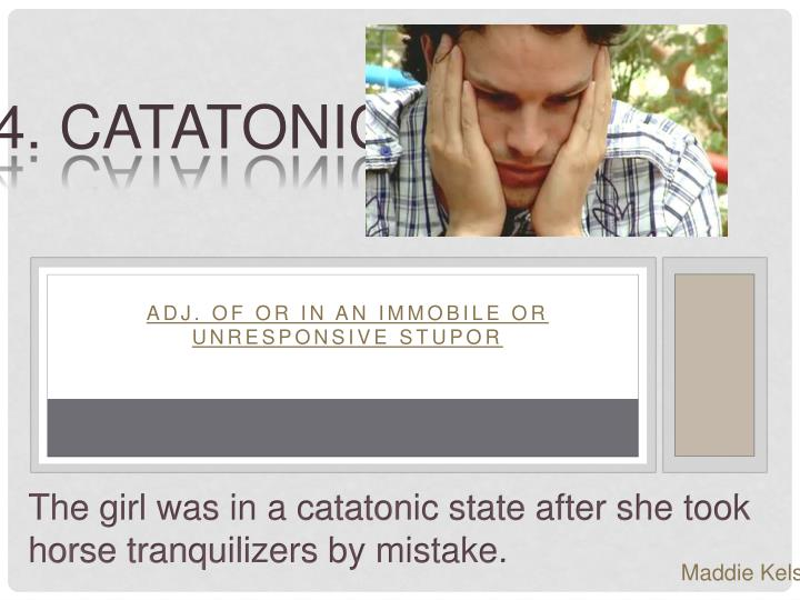 14. Catatonic