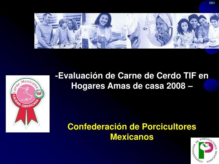 -Evaluación de Carne de Cerdo TIF en Hogares Amas de casa 2008 –