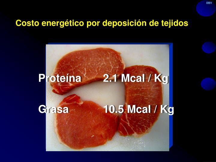 Costo energético por deposición de tejidos