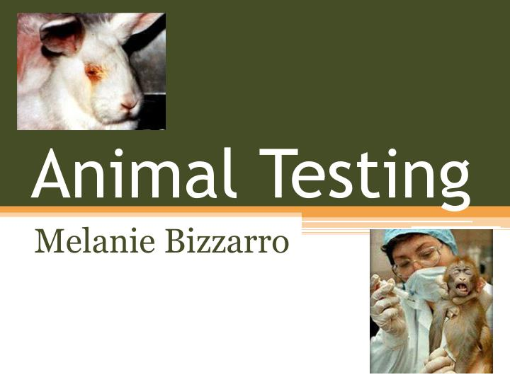 animal testing is inhumane and should The different types of animal testing and why they are morally wrong animal testing is cruel and an inhumane way to torture animals for mankinds own benefit there have been millions of animals that have suffered a vicious, painful death in the name of research.