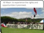 all maori to experience the rights and opportunities it promised