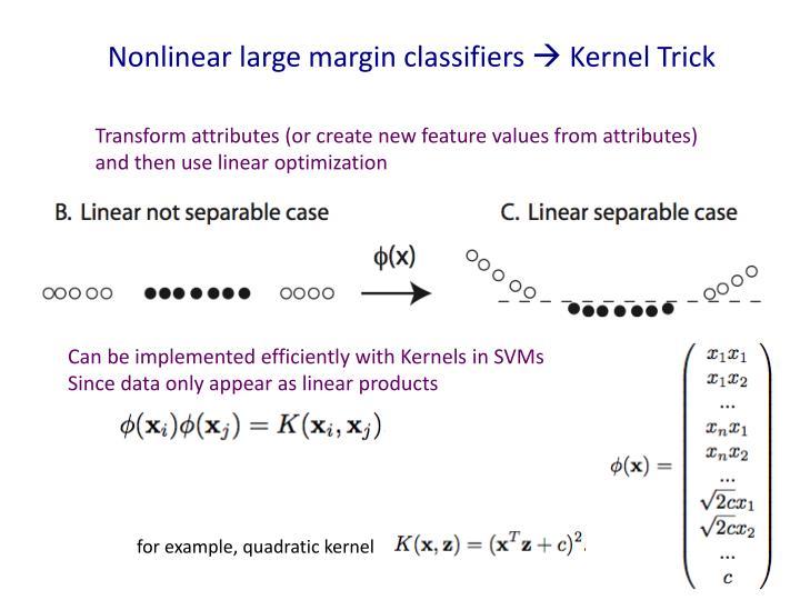 Nonlinear large margin classifiers