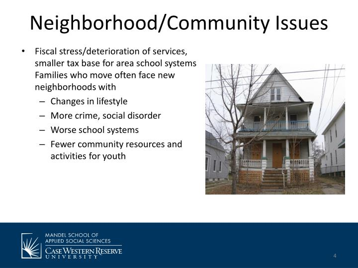 Neighborhood/Community Issues