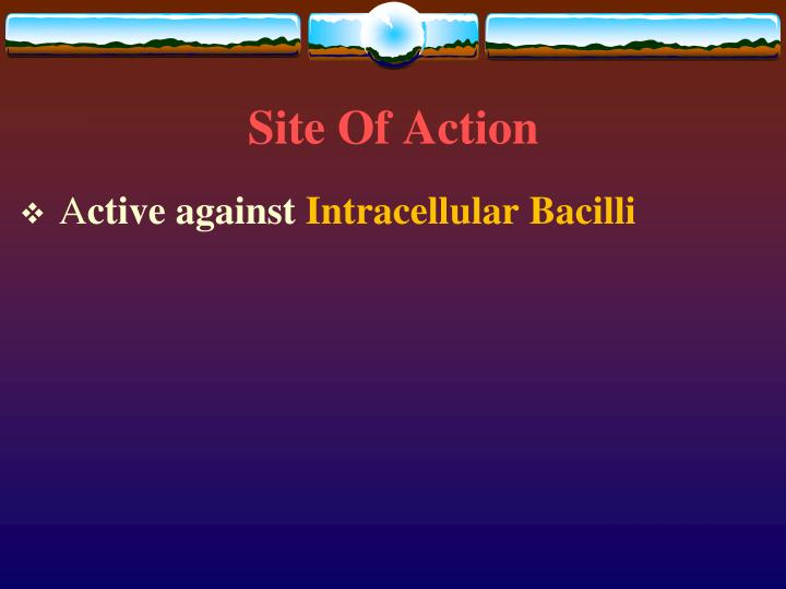 Site Of Action