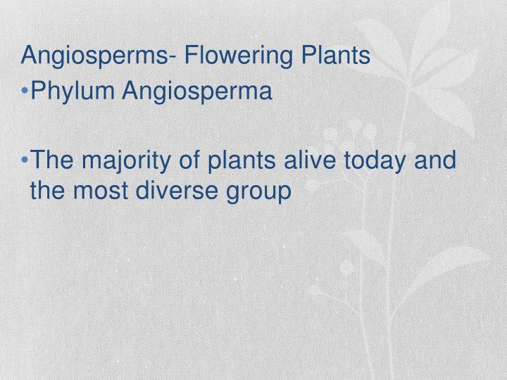 introduction of angiosperms