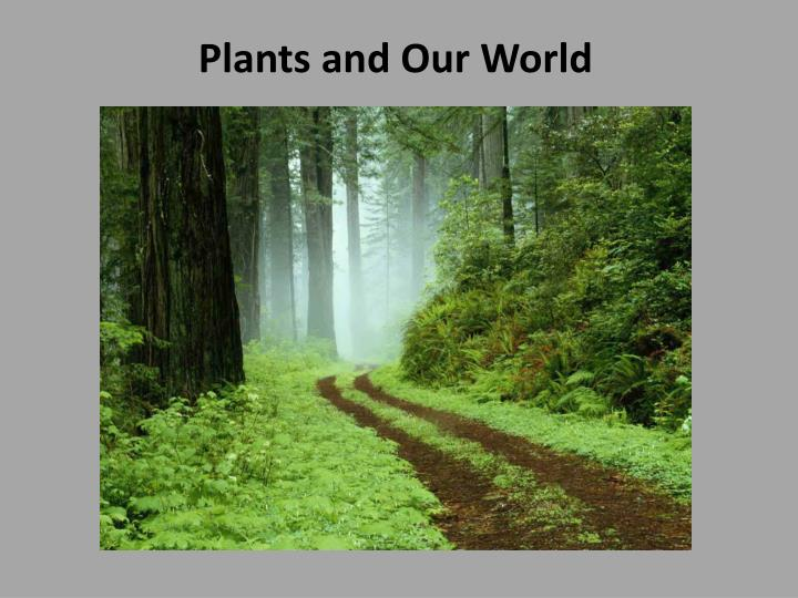 plants and our world n.