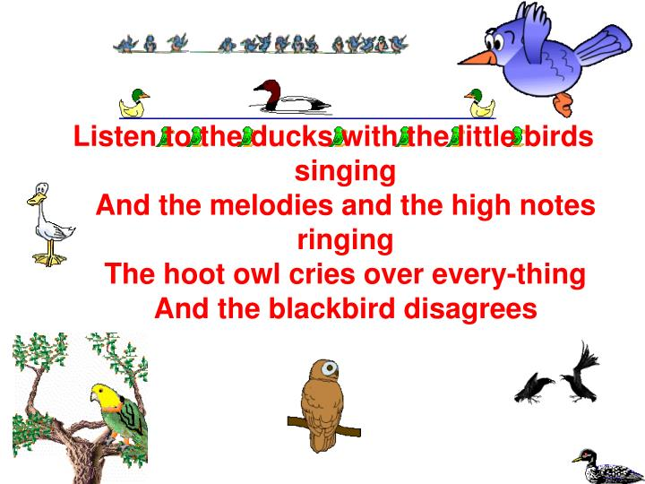 Listen to the ducks with the little birds singing