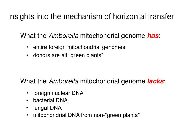 Insights into the mechanism of horizontal transfer