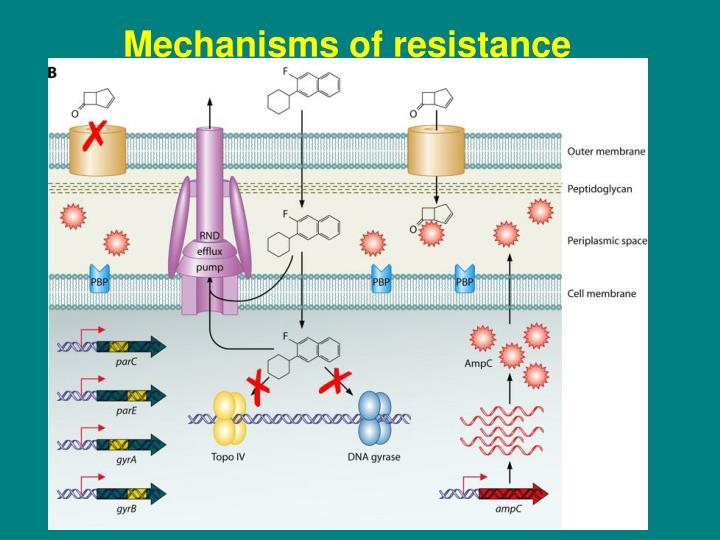 Mechanisms of resistance