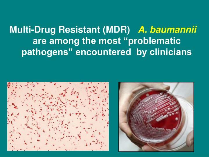 Multi-Drug Resistant (MDR)