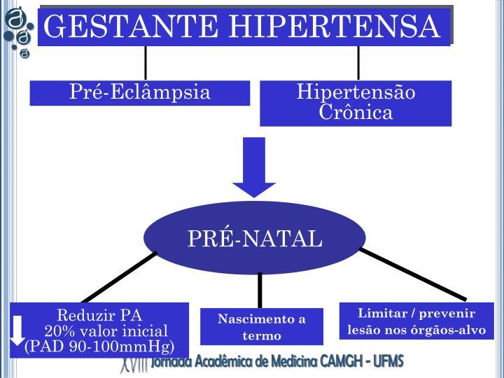 GESTANTE HIPERTENSA