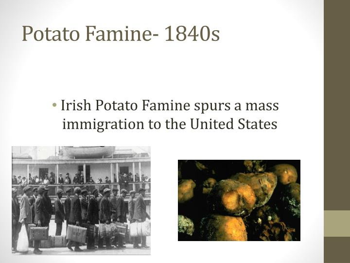 irish patato famine essay Irish potato famine event download 2703 kb date conversion famine-related diseases like typhus, dysentery, and cholera were running rampant, and fevers took many of the plant disease or pest essay objective: the purpose of this essay is to develop an appreciation of how plant diseases.