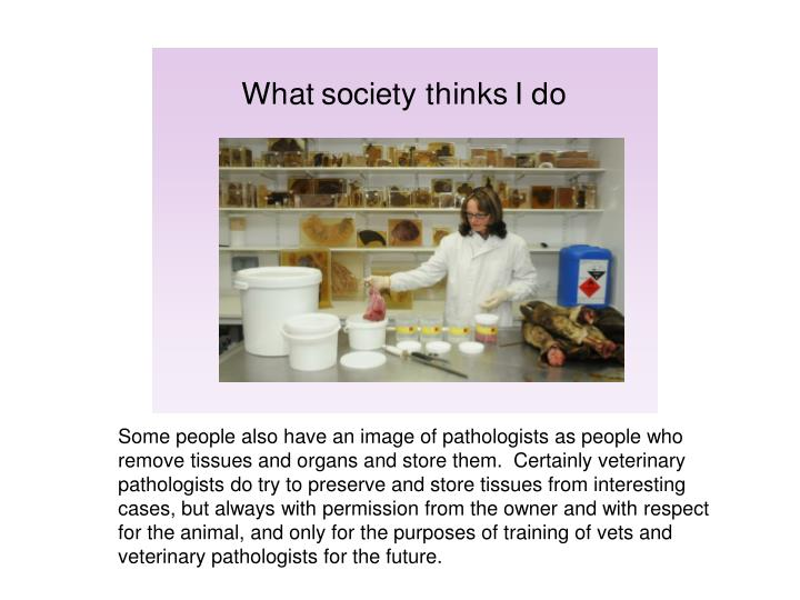 Some people also have an image of pathologists as people who remove tissues and organs and store them.  Certainly veterinary pathologists do try to preserve and store tissues from interesting cases, but always with permission from the owner and with respect for the animal, and only for the purposes of training of vets and veterinary pathologists for the future.