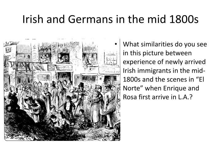austrian irish immigration to the The irish immigration to australia goes to australiathe next largish immigration of irish to australia was during the australian visas immigration.