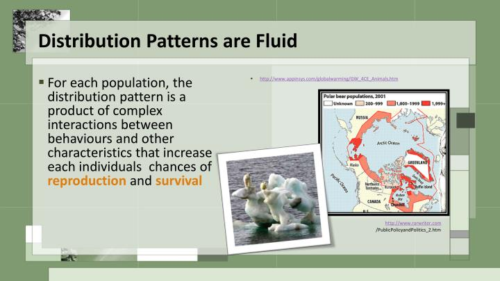 Distribution patterns are fluid