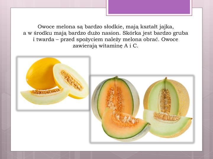Owoce melona są bardzo słodkie, mają kształt jajka,