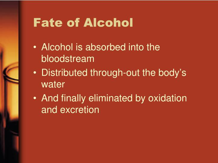 Fate of Alcohol
