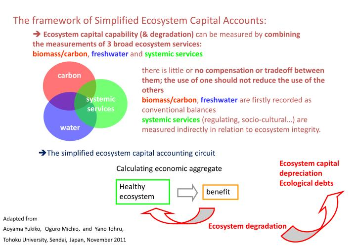 The framework of Simplified Ecosystem Capital Accounts: