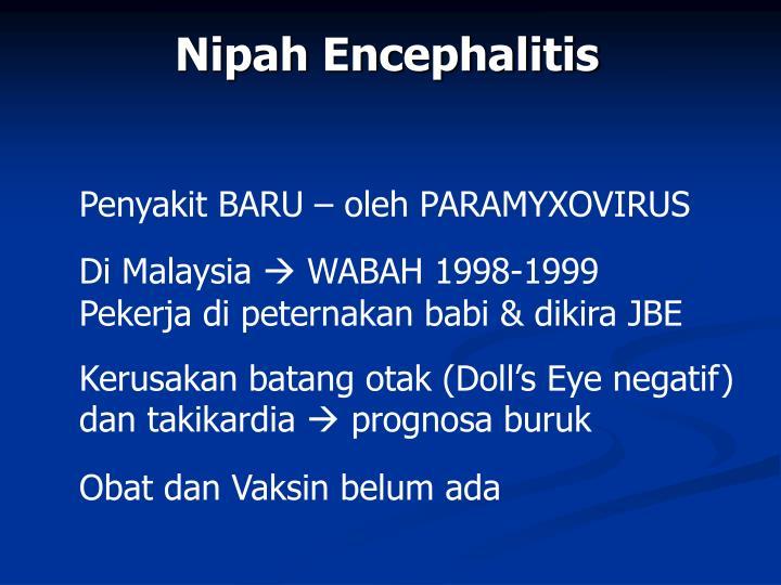 Nipah Encephalitis