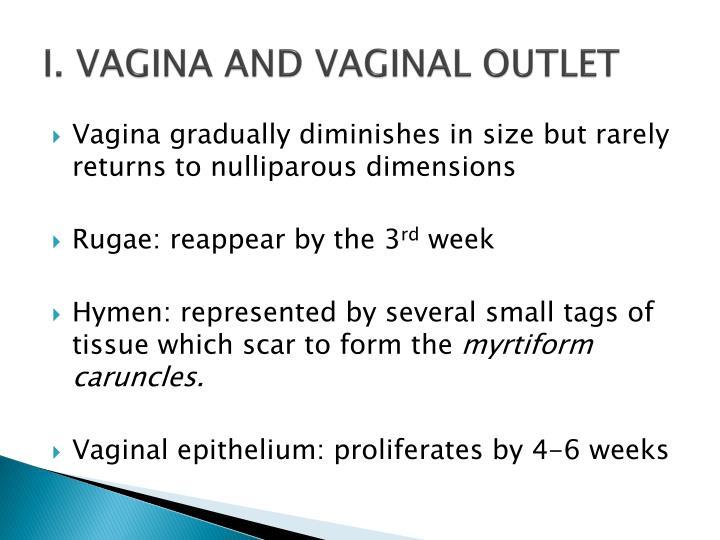 I. VAGINA AND VAGINAL OUTLET