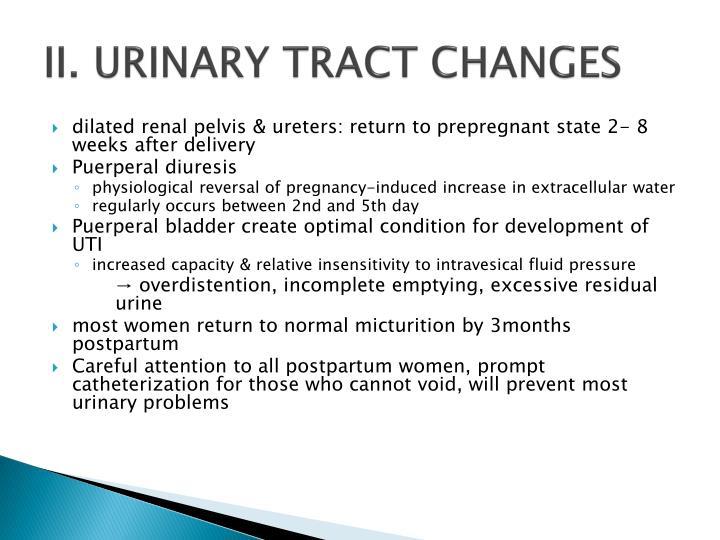 II. URINARY TRACT CHANGES
