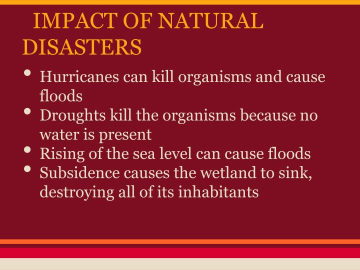 IMPACT OF NATURAL DISASTERS