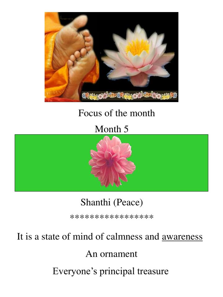 Focus of the month