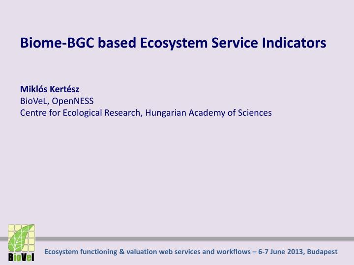 Biome-BGC based Ecosystem Service Indicators