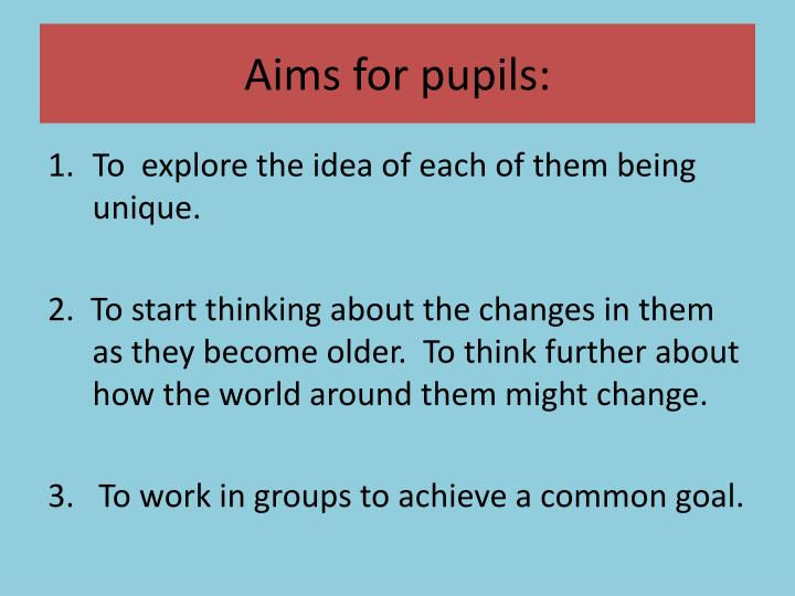 Aims for pupils