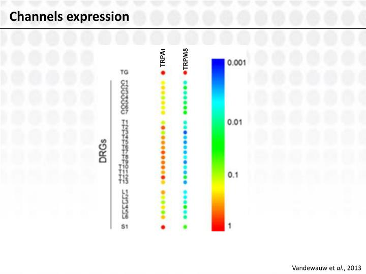 Channels expression